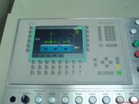 DSC00689 (Large)